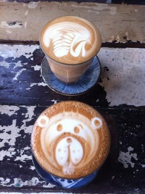 swan&bear
