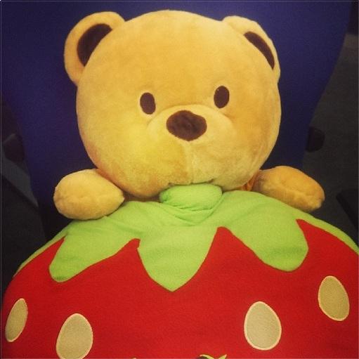 Why do bears like to eat strawberries?