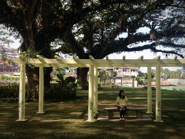 Di bawah pohon beringin (Under the weeping fig) at Ambon War Cemetery. Picture by Zulfiq Ardi Nugroho of National Geographic Indonesia